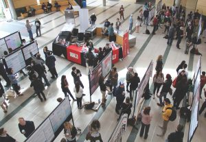 Above: a photo of Undergraduate Psychology Poster Day